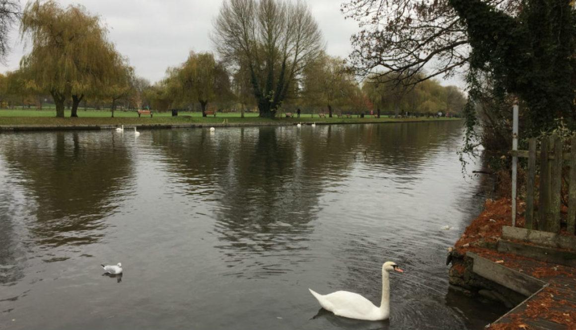 Stratford-upon-Avon 1165x665