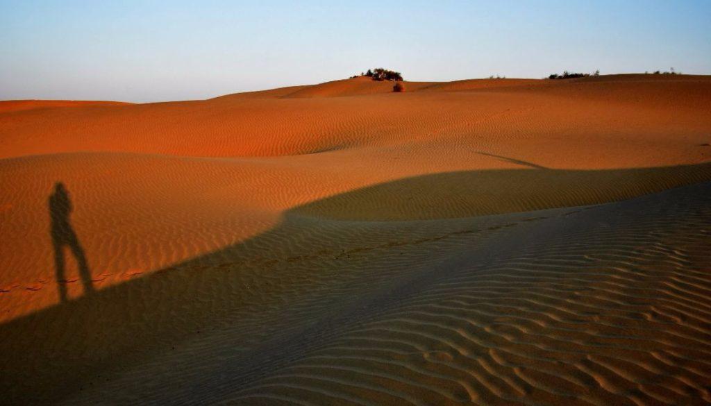 Desert - NKB_7613 1165x665