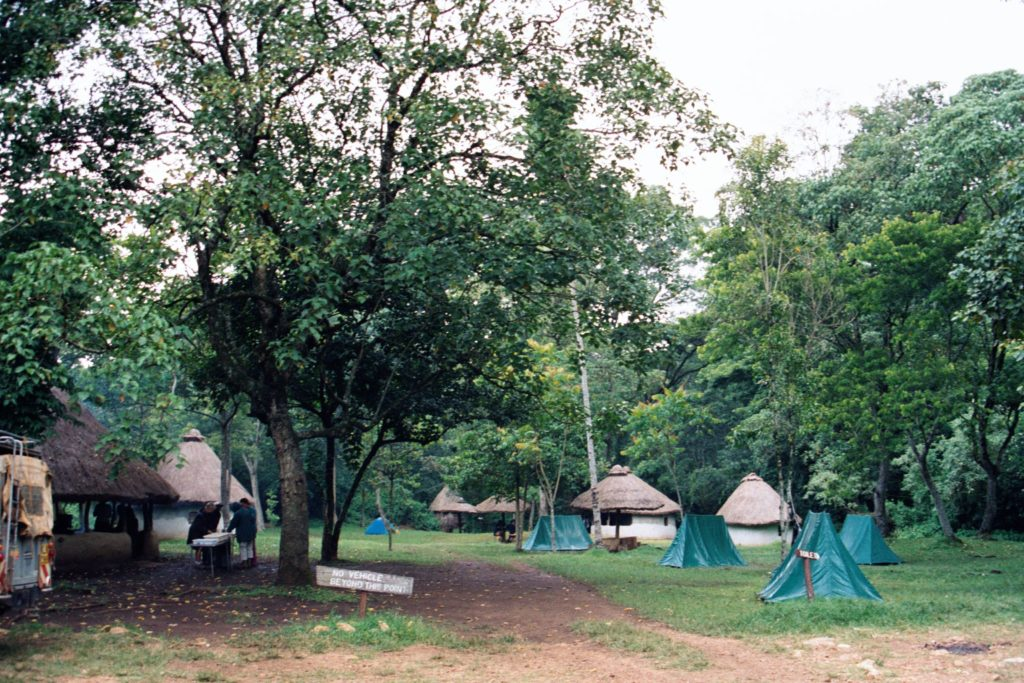 Campsites in Kakamega forest in Kenya.