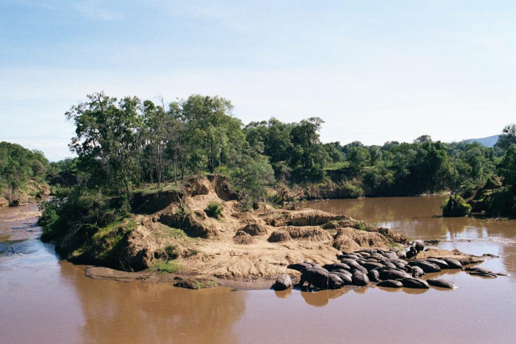 Breakfast with the Hippos in Masai Mara, Kenya