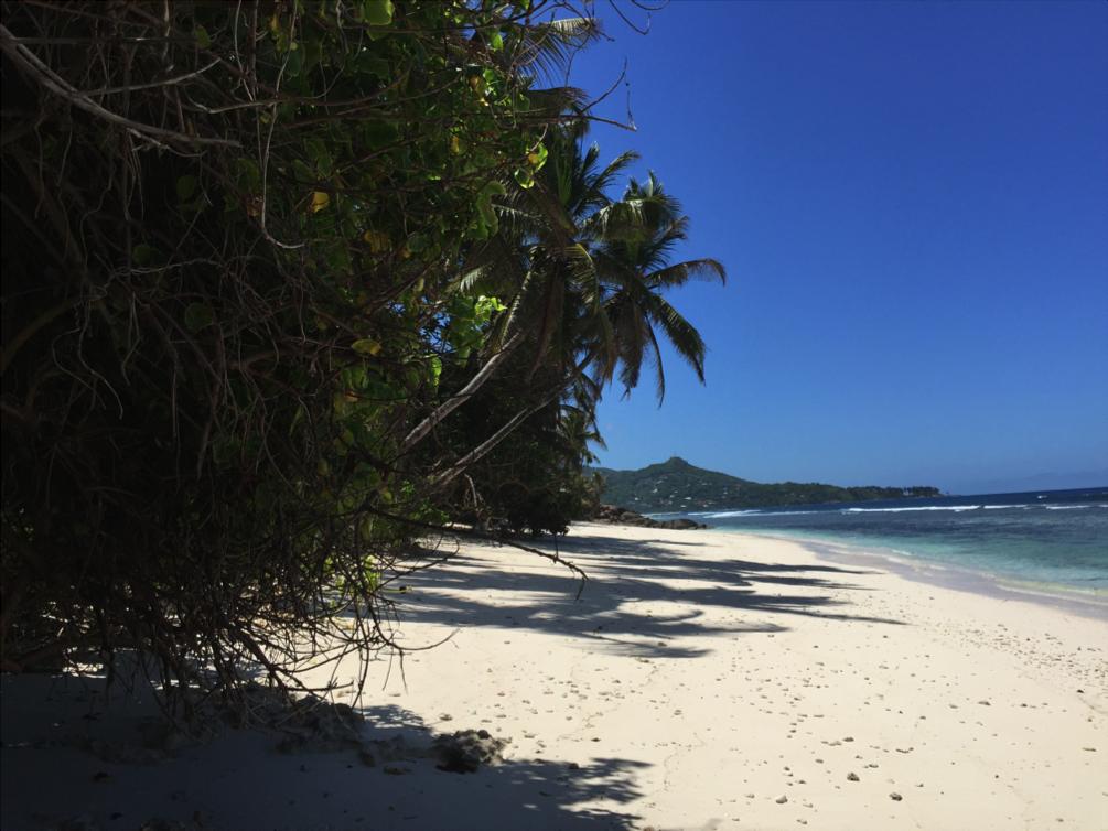 Seychelles's beach