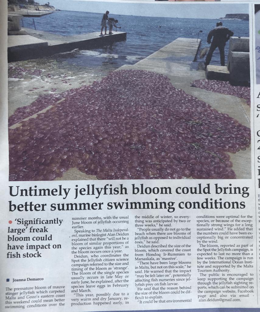 Swarms of jellyfish fill Malta's coastline that week.