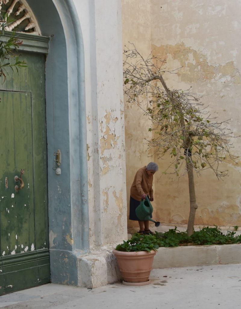 Mdina native caring for her neighborhood.