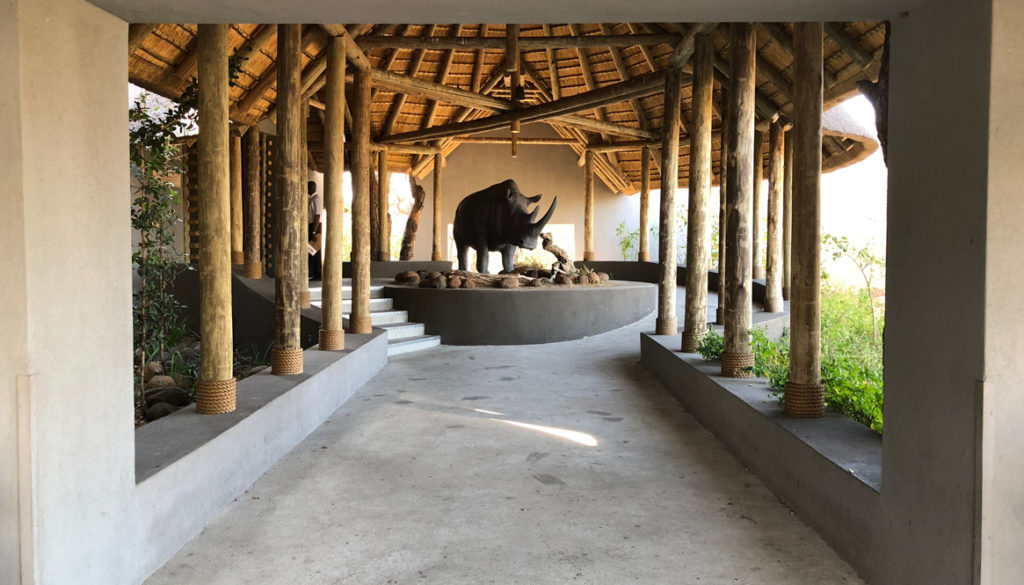 IMG_6033-Kruger-National-Park-Airport-entrance-1165x665