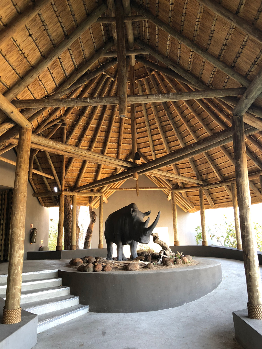 The main entrance of the Skukuza airport is right at the parking lot. To get to the baggage claim one would walk through this section guarded by the gient hippopotamus.