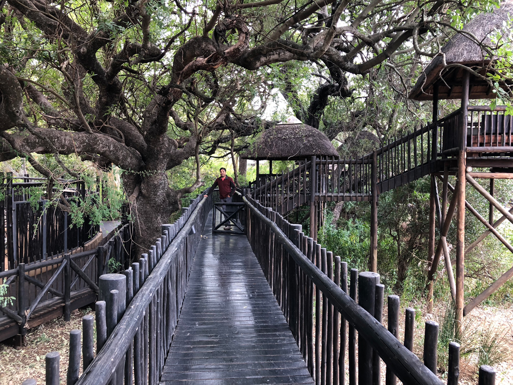 Morning stroll in Protea by Marriott at Kruger National Park