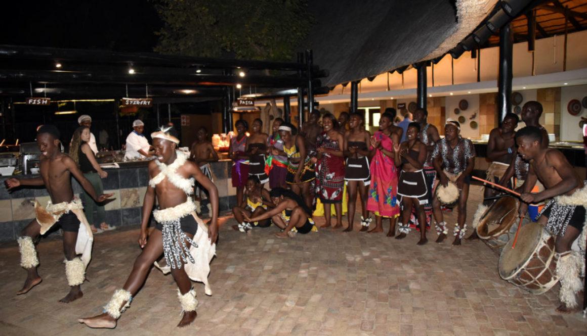 NKB_6104-Protea-Kruger-dance-1165x665