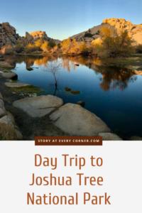 Joshua Tree National Park - Barker Dam