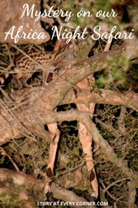 Pinterest pin for mystery on our African night safari
