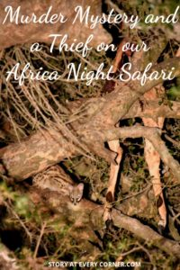 Pinterest pin about a murder mystery and a thief on our African night safari