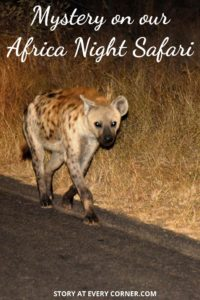 Pinterest pin - Mystery on our African night safari