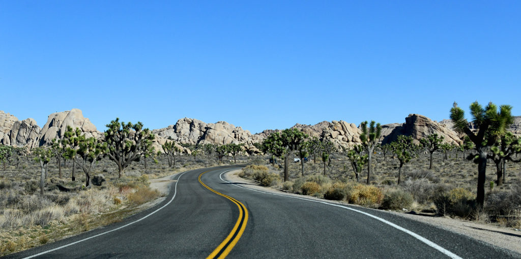 A typical drive in Joshua Tree National Park