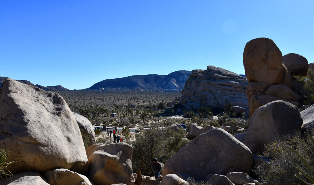 An entrance was opened through the rocks to create an Joshua Tree NP's Hidden Valley.