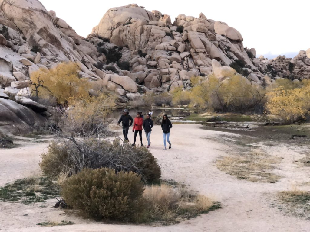 A happy bunch walking back after fun times at the Barker Dam in Joshua Tree NP.