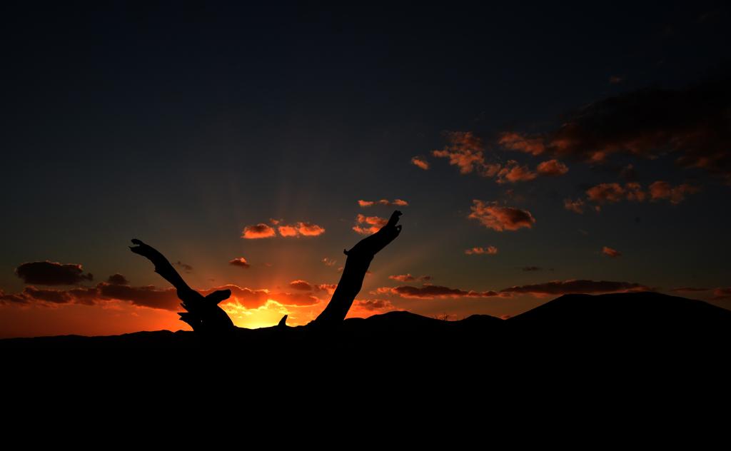 Gorgeous sunsets of Sossusvlei, Namib Naukluft National Park, near Dune 45
