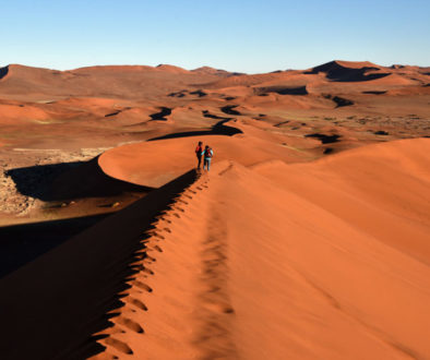 Namibia-Namib-Naukluft National Park Big Daddy Dune