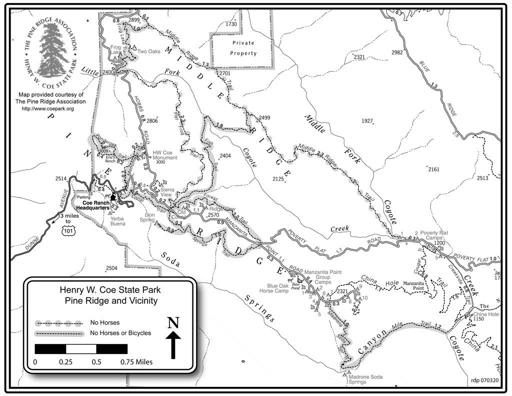 Map of Henry Coe State Park Trails - Pine Ridge area. Courtesy of Henry Coe Park