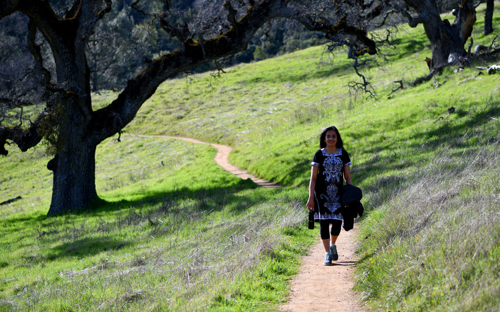 Hikes in Henry Coe State Park's Spring trail are relatively flat, with open meadows, pine and oak trees.